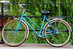 Pays-Bas - La bicyclette verte