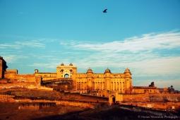 Inde - Jaipur, la ville rose
